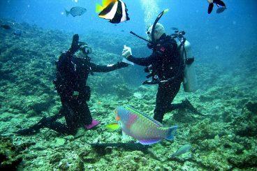 divers-681517_1280