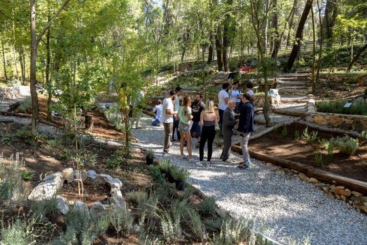 В Подгорице открыт Средиземноморский сад