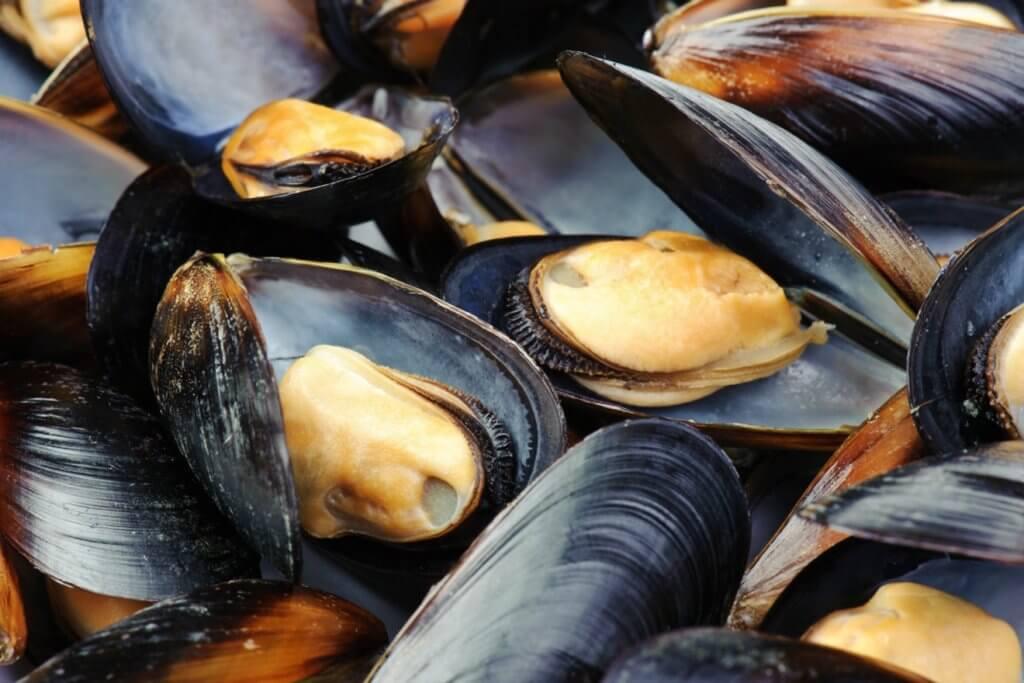 морепродукты Черногория