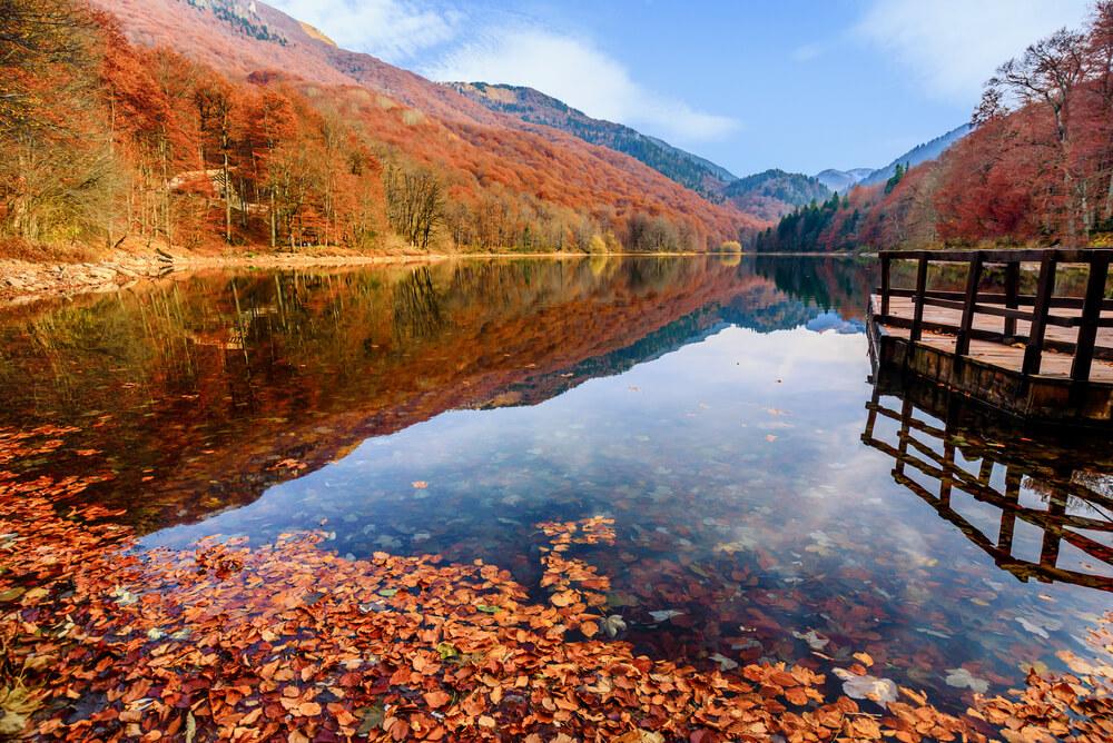 фотографии в парке Биоградска гора