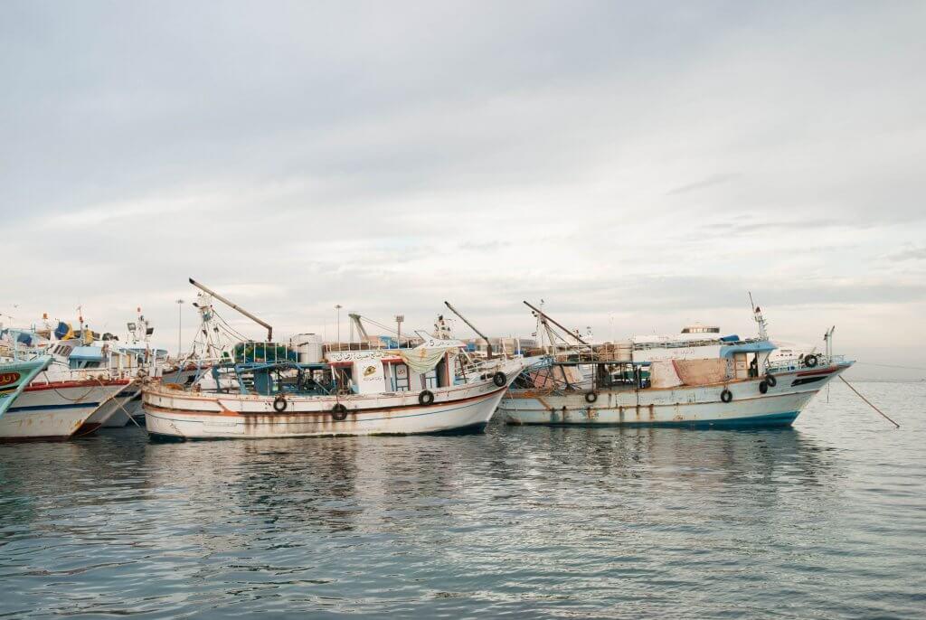 Виды и методы рыбалки в Черногории
