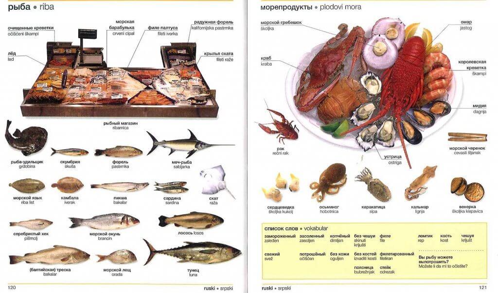 Виды рыбы Черногория