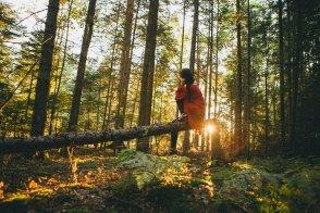Черногория и другие балканские страны вошли в топ-100 лучших стран для экотуризма