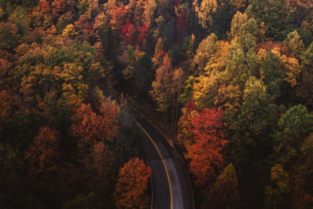 осень в Черногории